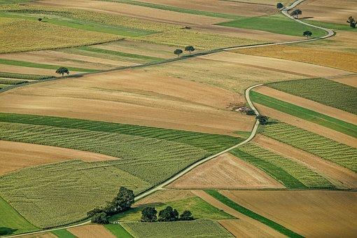 Studia rolnicze